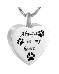 Ashanger Hart Always In My Heart -