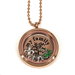 Voorbeeld Floating Locket 3
